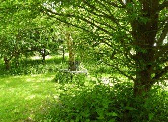 133 woodland bench