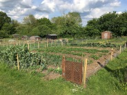 allotments1