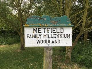 Millenniumboard